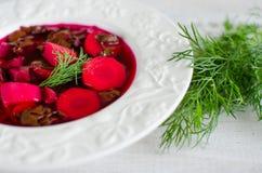 tjänad som soupstil för rödbeta land Arkivfoton