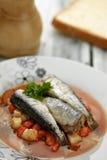 tjänade som grönsaker för sardines sås Arkivfoton