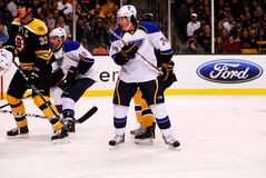 TJ Oshie St. Louis Blues Royalty Free Stock Photography