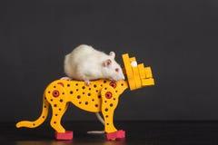 Tjalla ridningen på leksakleopard Royaltyfria Foton