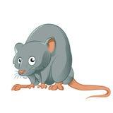 tjaller den roliga musen för bakgrundstecknad film vektorwhite Arkivbild