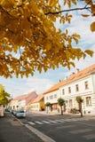 Tjeckien Blatna, September 27, 2017: Sikt av en härlig stadsgata med en väg som parkeras på den av bilar och hus arkivbild