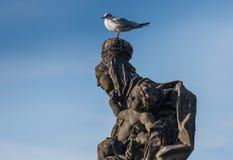 TJECKIEN PRAGUE - OKTOBER 02, 2017: Utseende av en underbar europeisk stad, staty med fågeln Royaltyfri Bild