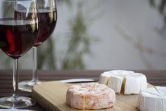 Tjeckisk Hermelin ost och vin Arkivfoton