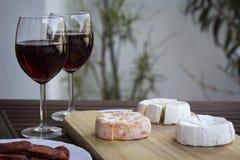 Tjeckisk Hermelin ost och vin Royaltyfri Foto