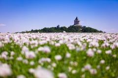 tjeckisk humprechtrepublik för slott Royaltyfria Bilder