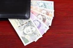 Tjeckisk koruna i den svarta plånboken