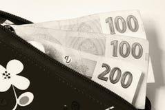 Tjeckisk valuta Royaltyfria Bilder