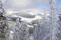 tjeckisk vinter Royaltyfria Bilder