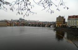 tjeckisk vltava för prague republikflod Arkivfoton