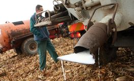 tjeckiska bönder mjölkar protest Royaltyfri Foto