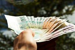 Tjeckiska pengar i hand royaltyfri bild