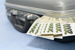 Tjeckiska pengar skrapade i en grå metallresväska Royaltyfria Bilder