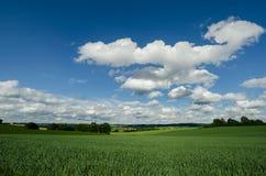 Tjeckiskt landskap med fältet Royaltyfria Foton
