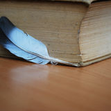 Tjock bok och vit fjäder/penna royaltyfria foton