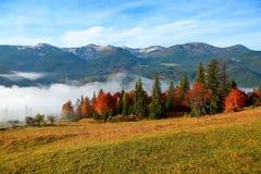 Tjock dimma, som mjölkar, täckt dalen, bak som löneförhöjningbergkullar Royaltyfria Bilder
