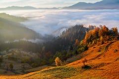 Tjock dimma, som mjölkar, täckt dalen, bak som löneförhöjningbergkullar, på som varma strålar för nedgången av solen Royaltyfri Bild