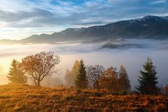 Tjock dimma, som mjölkar, täckt dalen, bak som löneförhöjningbergkullar, på som varma strålar för nedgången av solen Arkivfoto