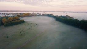 Tjock morgondimma över floden och ängen Flyga över mistlandskapet stock video
