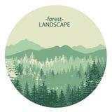 tjock morgondimma i sommarskogen Arkivbilder