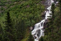 Tjodnadalsfossen waterfall near Odda, Hordaland county, Norway.  royalty free stock image