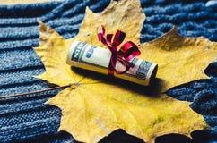 Tjugo dollar som slås in i ett rött band Royaltyfri Fotografi