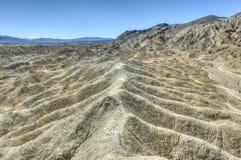 Tjugo mula Team Canyon Road, Death Valley Royaltyfri Fotografi