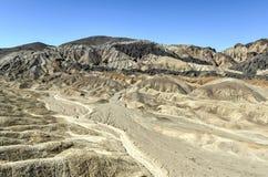 Tjugo mula Team Canyon Road, Death Valley Royaltyfri Foto