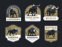 Tjurar och buffel royaltyfri illustrationer