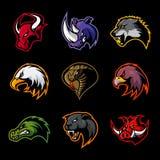 Tjuren noshörningen, vargen, örnen, kobran, alligatorn, pantern, galthuvud isolerade vektorlogobegrepp Arkivbilder