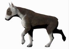 tjurhundterrier vektor illustrationer