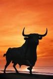 Tjurstaty mot den orange solnedgången, Spanien. royaltyfri foto
