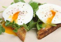 Tjuvjagade ägg på rostat bröd med källkrasse Arkivbild