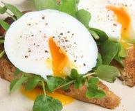 Tjuvjagade ägg på rostat bröd med källkrasse Royaltyfri Foto