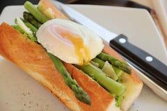 Tjuvjagat ägg med sparrisen Royaltyfri Foto