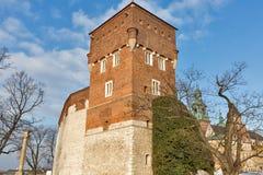 Tjuvtorn av den Wawel slotten i Krakow, Polen Arkivfoto