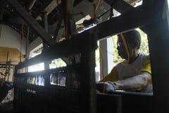 Tkactwa sheath Zdjęcia Stock
