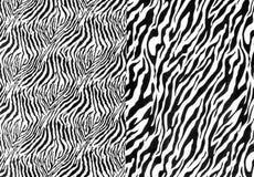 Tkanina na pasiastej zebrie obraz stock