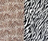 Tkanina na pasiastej zebrie fotografia stock
