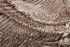 tkanina, tekstura, tło, płótno, wzór, projekt, tapeta, materiał, pole, moda, draperia, linia, powierzchnia, kolor, światło, s Fotografia Royalty Free