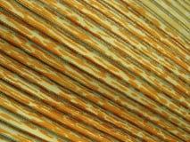 tkaniny stubarwnej ulgi pasiasty kolor żółty Obrazy Stock