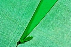 tkaniny zieleni suwaczek Obraz Royalty Free
