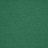 Tkaniny zielony tło obraz royalty free