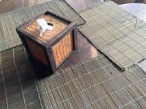 Tkanki pudełko Obraz Stock