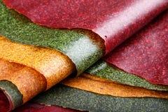 Tklapi wysuszona mashed owocowa braja, Kolorowa owocowa skóra -/ zdjęcia stock