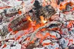 Tli się gomółka węgiel drzewny restauracja i grilla lumpwood quebracho drzewa, premia stopnia, węgiel drzewny Zdjęcia Stock