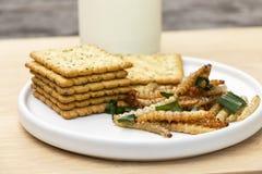 ?tlig bambu avmaskar frasiga kryp eller bambu Caterpillar med kakor i keramisk matr?tt Begreppet av proteinmatk?llor fr?n royaltyfri bild