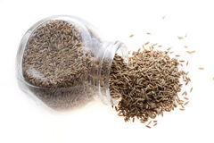 Tmin, caraway, cumin. From glass on white background royalty free stock image