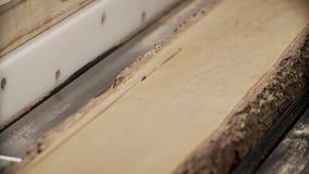 Tnąca drewniana deska elektrycznym kółkowym saw zbiory