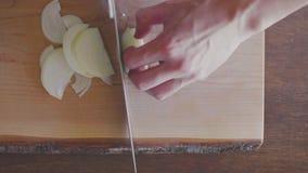 tnący up cebula z nożem zbiory